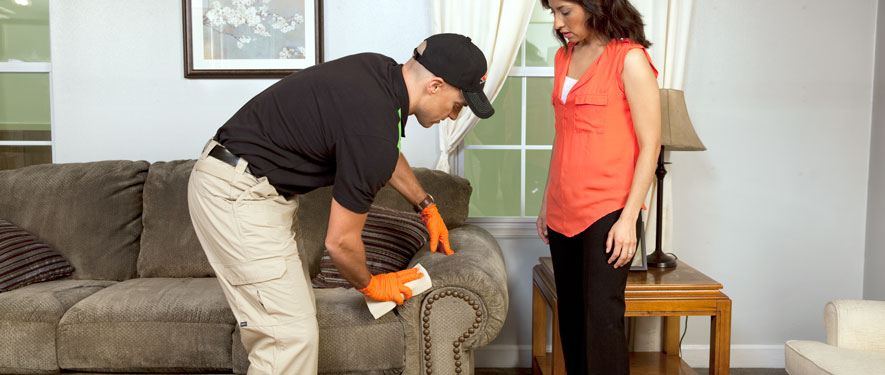 Port Townsend, WA carpet upholstery cleaning
