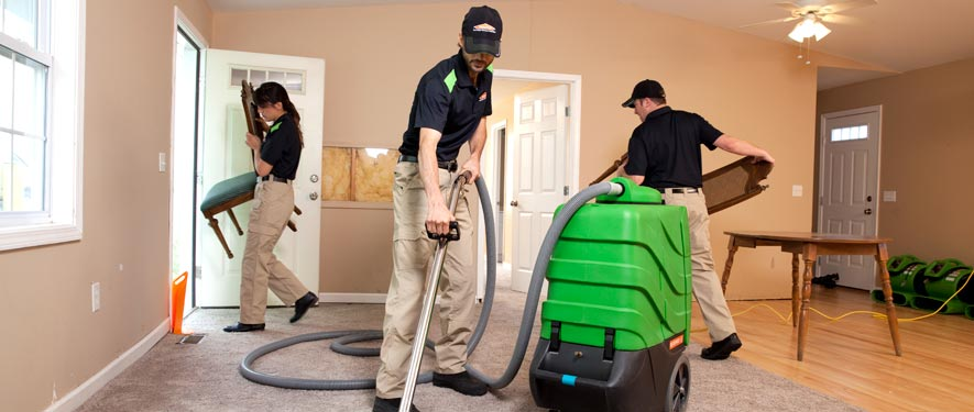 Port Townsend, WA cleaning services
